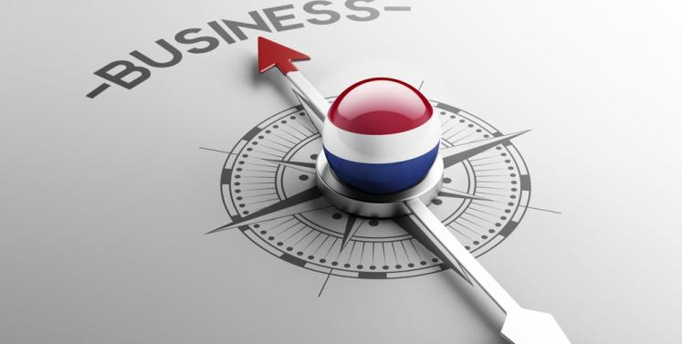 Dutch Holdings for Asian Investors: An Introduction